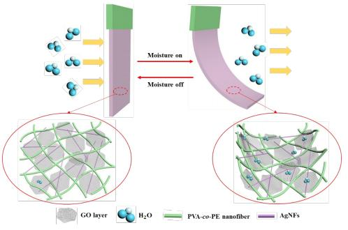 Flexible and Super-Sensitive Moisture Responsive Actuators by Dispersing GO into Three-Dimensiona