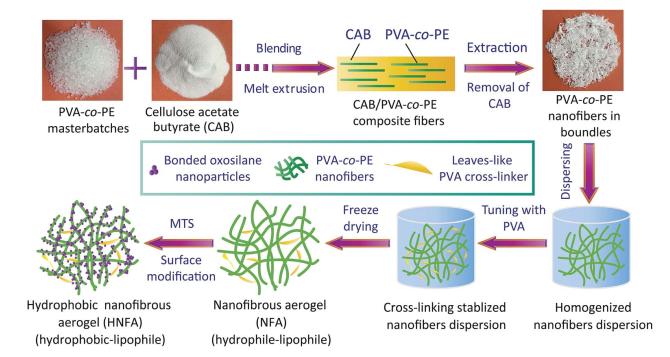 45.A facile route to the production of polymeric nanofibrous aerogels for environmentally